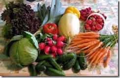 Salubrité des aliments à la ferme